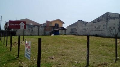 terrenos para alugar em araucaria capelavelha