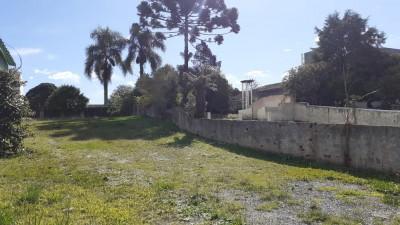 terrenos para comprar em araucaria centro
