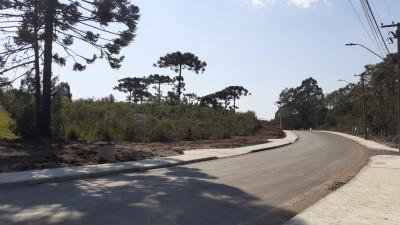 grandes areas para comprar em araucaria costeira