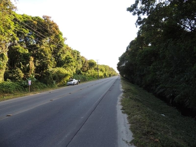 OPORTUNIDADE PARA CONSTRUTORES, 04 TERRENOS JUNTOS DE FRENTE PARA AVENIDA PARANA